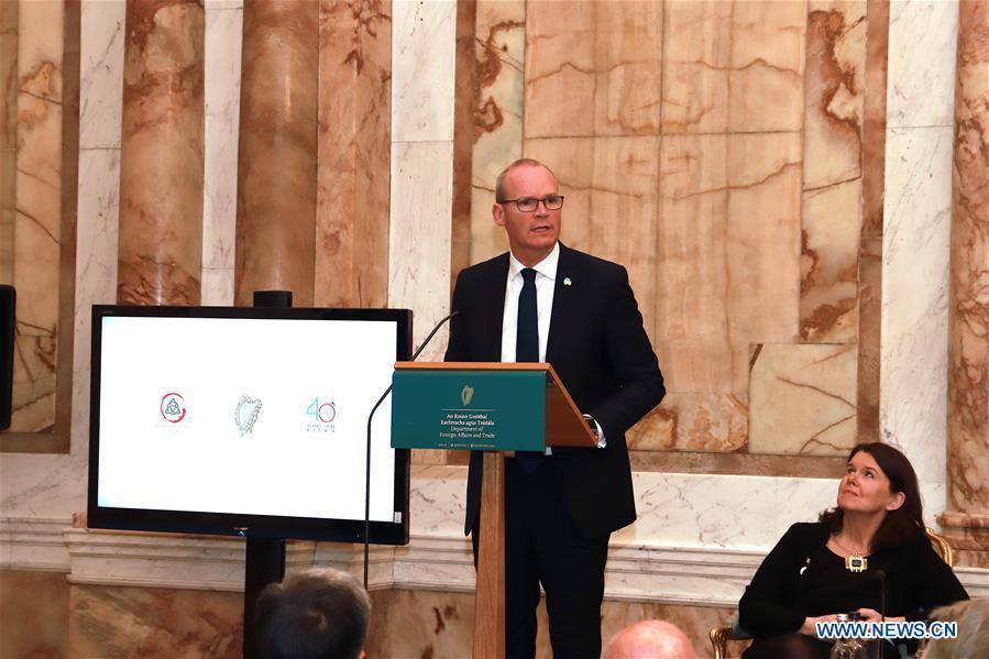 Irish Deputy Prime Minister Simon Coveney